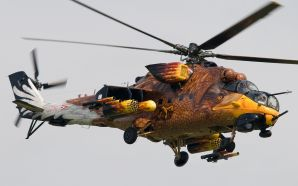 Helicopters - pretty bird