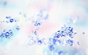 Sparkling and Romantic Backgrounds HK011 350A