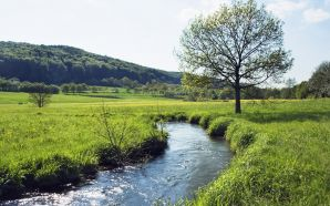River running through meadow in Bavaria